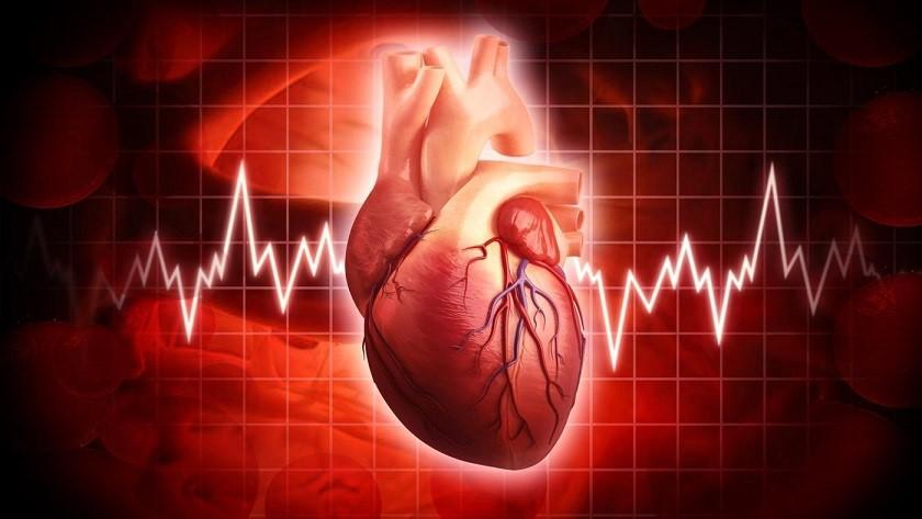 انجام نوار قلب در منزل | مرکز خدمات پرستاری مهرپرور